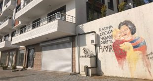 مناهضة للعنف ضد النساء والأطفال على جدران يالوفا 310x165 - رسومات مناهضة للعنف ضد النساء والأطفال على جدران يالوفا