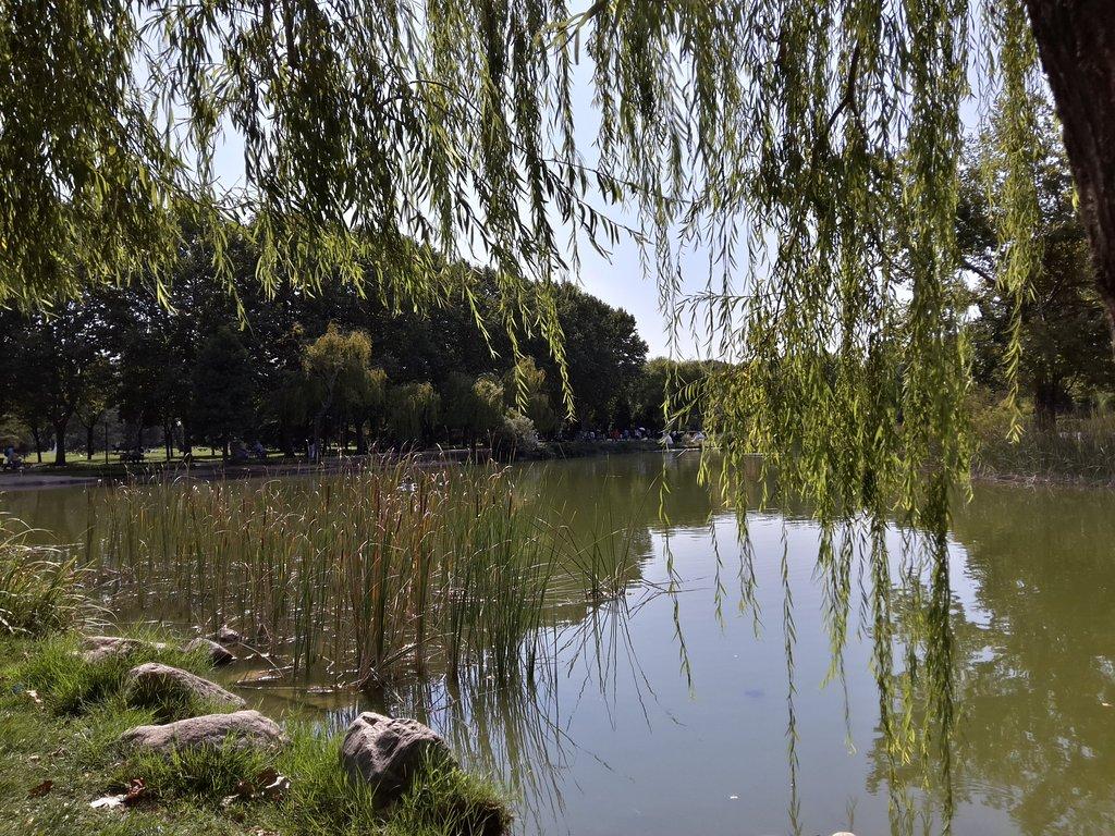 caption 1 3 - الحديقة الثقافية او كولتور بارك من أجمل حدائق بورصة