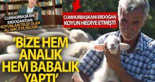 يتصل بمواطن تركي فقد اغنامه في بالك اسير 310x165 - مفاجأة لمواطن تركي .. أردوغان يتصل به ويعطيه بشرى سارة