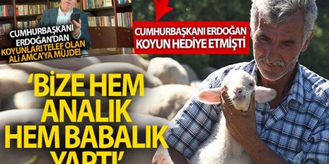 يتصل بمواطن تركي فقد اغنامه في بالك اسير 660x330 - مفاجأة لمواطن تركي .. أردوغان يتصل به ويعطيه بشرى سارة