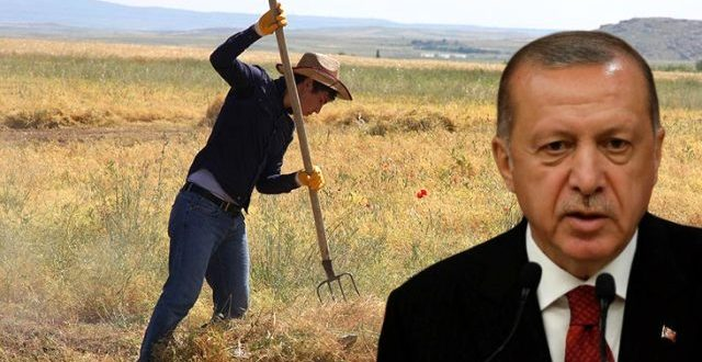 erdogan talimat verdi calismalar tamamlandi 13299640 6975 o 640x330 - أردوغان اعطى التعليمات .. سيتم توزيع أراضي على آلاف المزارعين مجانا