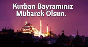 kurban bayrami mesajlari 310x165 - ما موعد عيد الاضحى  في تركيا عام 2020 ؟