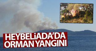 3362851 310x165 - شاهد بالفيديو حريق ضخم في غابة بولاية اسطنبول