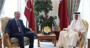 54544554 1 310x165 - أردوغان يصل قطر اليوم الخميس في اول زيارة خارجية له بعد كورونا