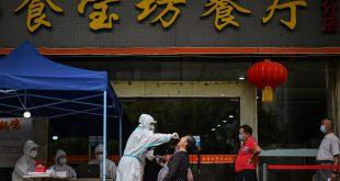 """7a9b4b29 b7e1 45e6 bbed 55209e46e1bf 310x165 - عالمة صينية فارة من السلطات تفجر مفاجأة حول كورونا .. """"قد نختفي"""""""